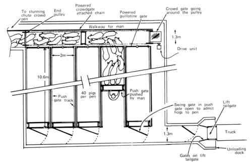 Design of loading facilities and holding pens malvernweather Gallery